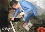 """义乌公检环联动""""护水剿劣"""" 已有20人被追究刑事责任"""