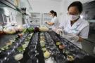 瀋陽學校食堂今年須建立快檢室 確保校園食品安全