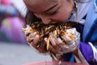游客狂吃2斤炸昆虫
