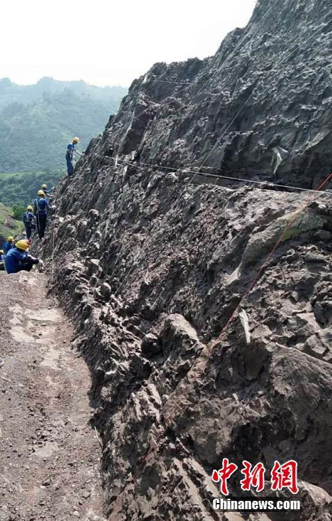 重大发现!重庆惊现世界级恐龙化石群 种类丰富