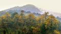 18℃西山森林公园,绿杨阴里的洗肺天堂-旅游频道
