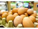 韩政府回收数十万枚毒鸡蛋 超市将恢复正常销售