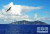 日称中国海军舰艇等进入钓鱼岛范围活动 日相向各省下令警戒监视