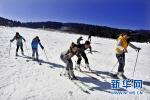石家庄举行世界雪日暨国际儿童滑雪节主题活动