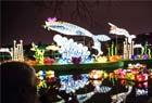 武汉东湖灯会亮灯