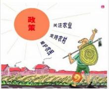 农村集体产权制度改革试点单位确定