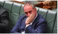 澳副总理被双重国籍风波卷下马:我不会哭的!