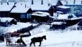 东北雪乡花式宰客,旅游胜地为何让游客受伤?