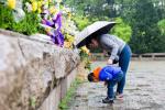 清明时节雨纷纷 一朵朵菊花缅怀先烈