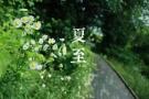 """辽宁""""夏至""""全省艳阳照 9地最高气温达30℃"""