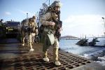 人數翻一番!外媒稱美海軍陸戰隊將增加在挪威駐軍