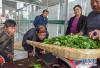 河南葉縣強化行業幫扶 精準發力推進脫貧工作