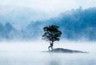 黄山奇墅湖如仙境