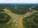 """新土地管理法:将农民土地权益""""大写"""""""