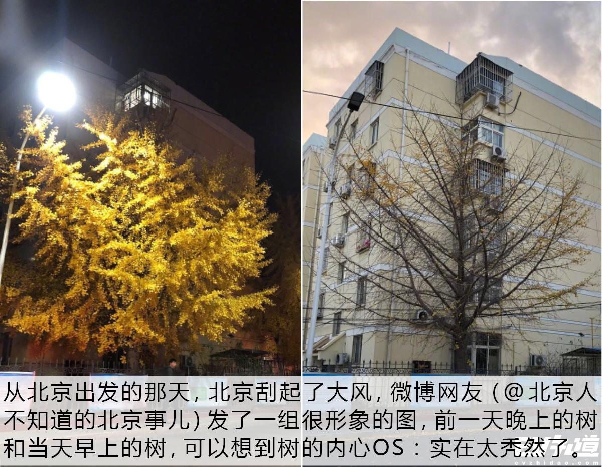 上海到杭州打卡最美钱塘 瑞虎e&艾瑞泽e近海体验官游记