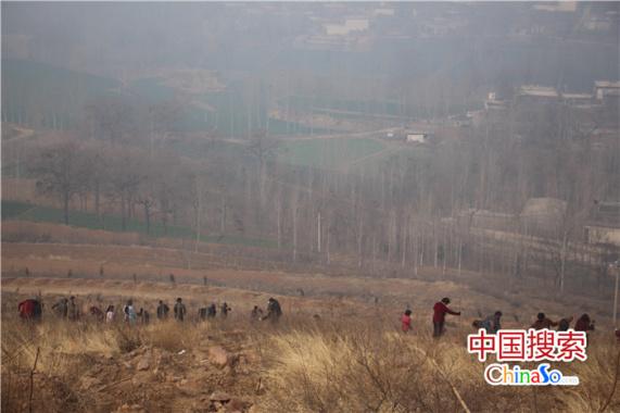 河南郏县:抢抓时机绿化荒山
