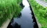 沈阳12条城市黑臭水体 9月30日前全面整治