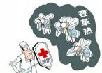 检验检疫部门提醒:东南亚国家登革热高发 出游提高防病意识