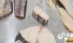 9.9元/盒的鳕鱼真不能买!青岛市民买了后吃完闹肚子
