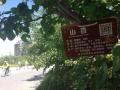 """錦州公園裏的樹木挂""""身份證"""" 掃一掃就能""""自我介紹"""""""