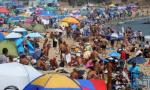 持续的高温天气搅热了海滨浴场 大连海边热闹啦
