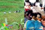 云南一运载学生面包车翻下山沟 已致2死10伤