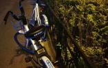 """沈阳9公里路程102个""""瘫痪""""单车 共享单车怎么停?谁来管?"""