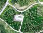 """郑州森林公园亮丽回归""""十一""""前后对外开放"""