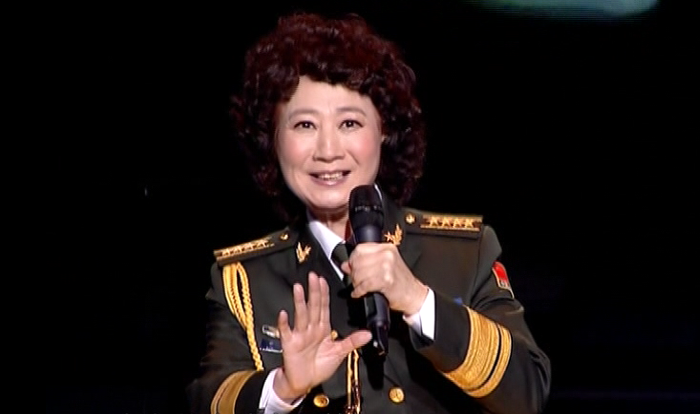 申丽娟演唱歌曲《原野上的小花》