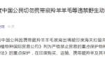 外媒:两名中国女性在印携藏羚羊羊毛披肩出境被扣