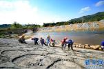 河北:高度重視四季度非煤礦山安全生産工作