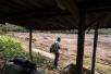 巴西溃坝事故遇难人数升至84人 仍至少276人失踪