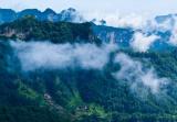 河南济源:新愚公啃下荒山绿化硬骨头
