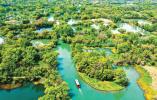 多家湿地公园陆续恢复开放 畅游湿地深呼吸