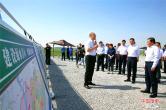 河南兰考将在黄河滩区建设10万亩优质饲草产业带