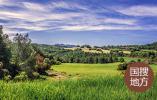 河南西峡:生态产业筑牢乡村振兴根基